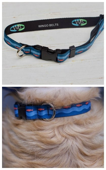 wingobelts dog collars